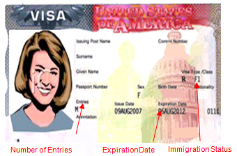 nonimmigrant visa application issued means